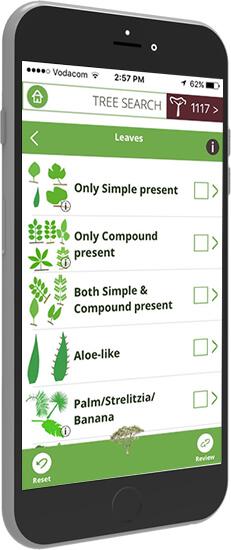 The Tree App