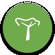 TheTreeApp-Mytrees