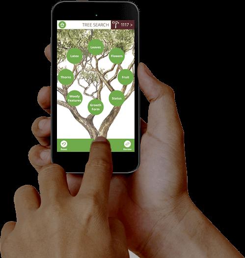 TheTreeApp - Mobile App