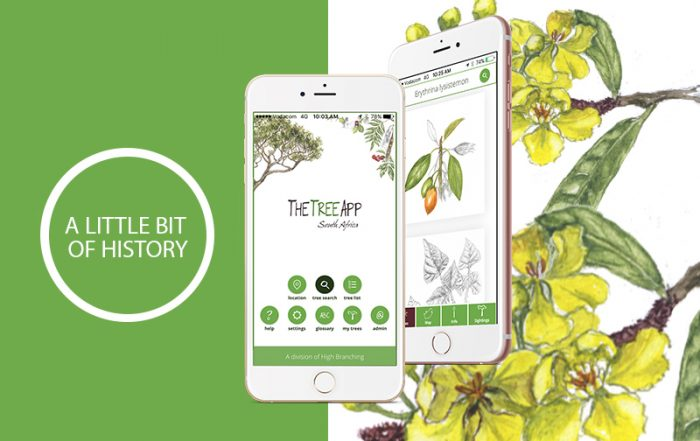 Illustration of TheTreeApp mobile app and and background of flowers from a tree.